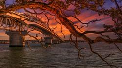 Harbor BridgeSunset1