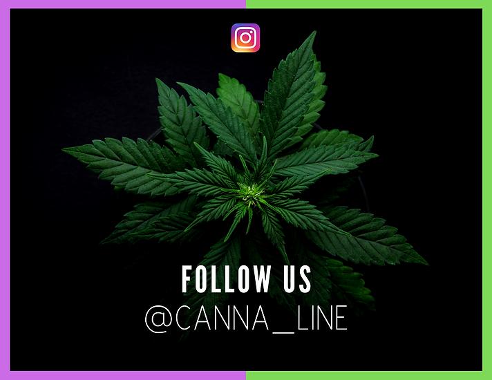 Cannaline Insert card - Follow us.png