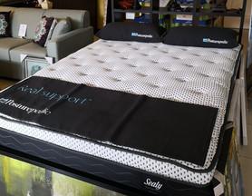 Sealy Posturepedic Beds