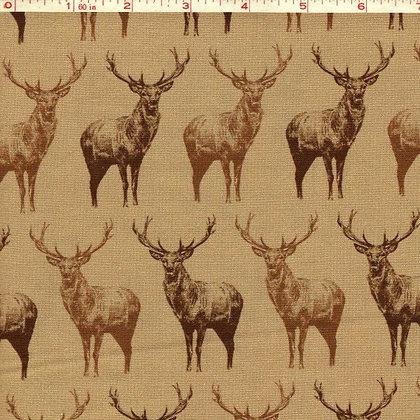 Animal Kingdom Fabric by the Yard