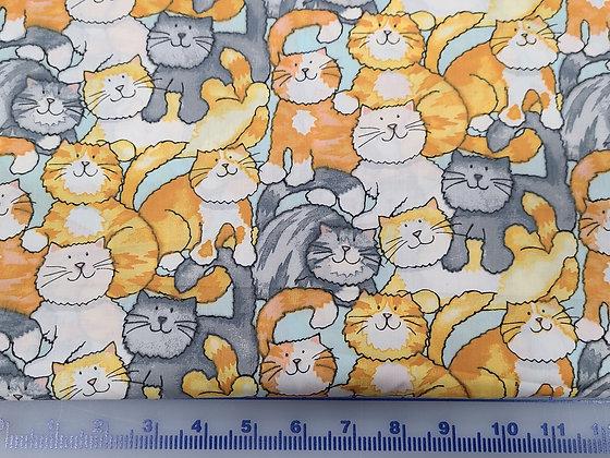 Fluffy Kitties