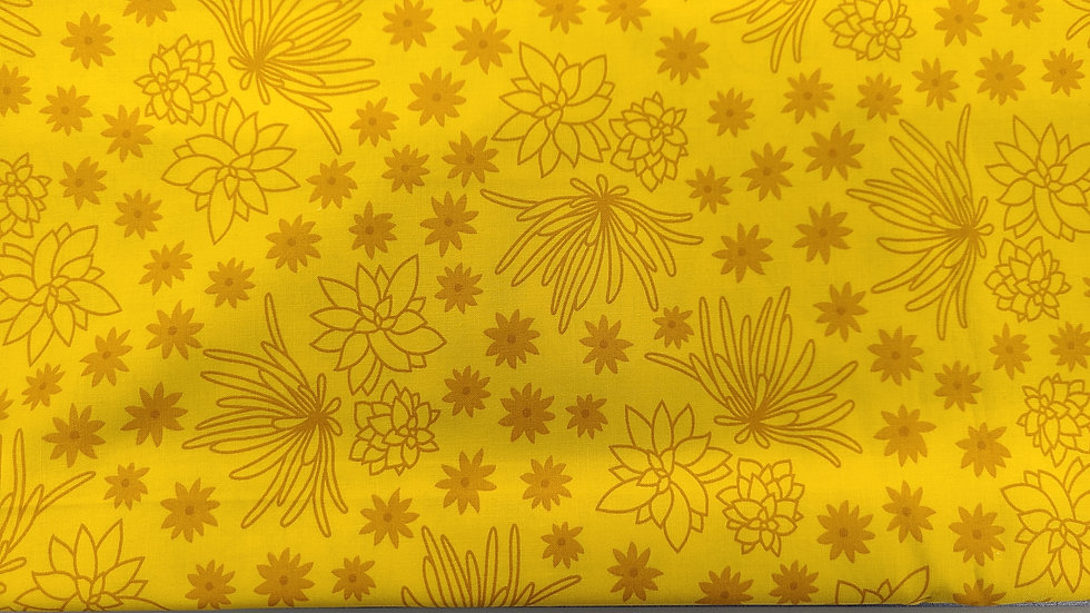 Yellow Succulents
