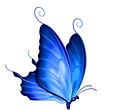 web blue left butterfly.png