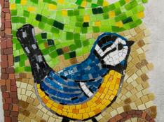 Elisabeth F. Mosaikkohlmeise im Werden