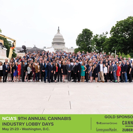 Lobbying for Congressional Action on Cannabis Banking