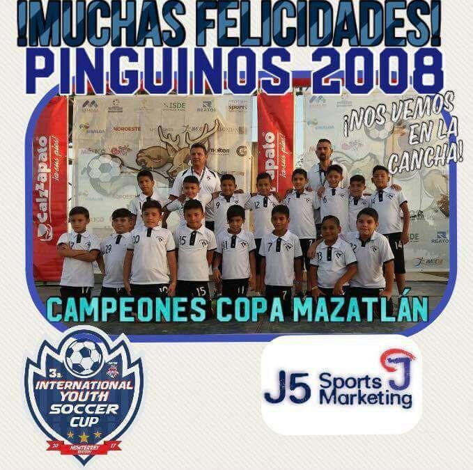 Pingüinos 2008