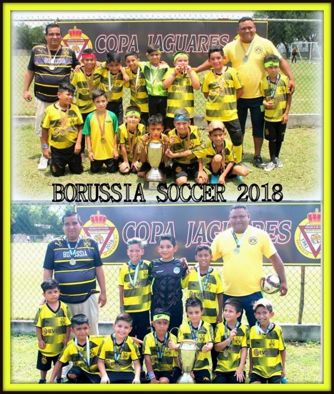 Borussia Soccer 2007