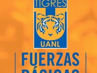 Tigres Fuerzas Básicas 2005 y 2006, ¡Bienvenidos!