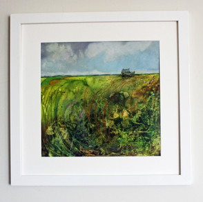 Fields and Hedgerows