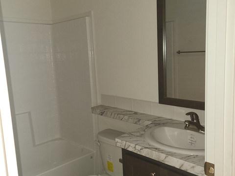 Wingate 28603G - Guest Bath (2).jpg