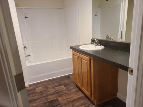 Eagle 28523P - Bathroom 2.jpg