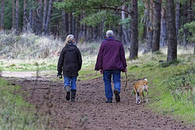 The Old Mill Holiday Cottages - Escape the hussle and bussle and recharge your batteries with some beautiful local dog walks. Leave the car behind and enjoy countryside and woodland walks directly from the door step 