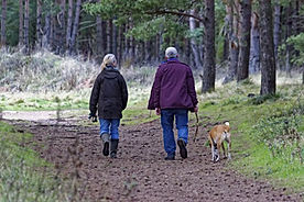 The Old Mill Holiday Cottages - Escape the hussle and bussle and recharge your batteries with some beautiful local dog walks. Leave the car behind and enjoy countryside and woodland walks directly from the door step ​