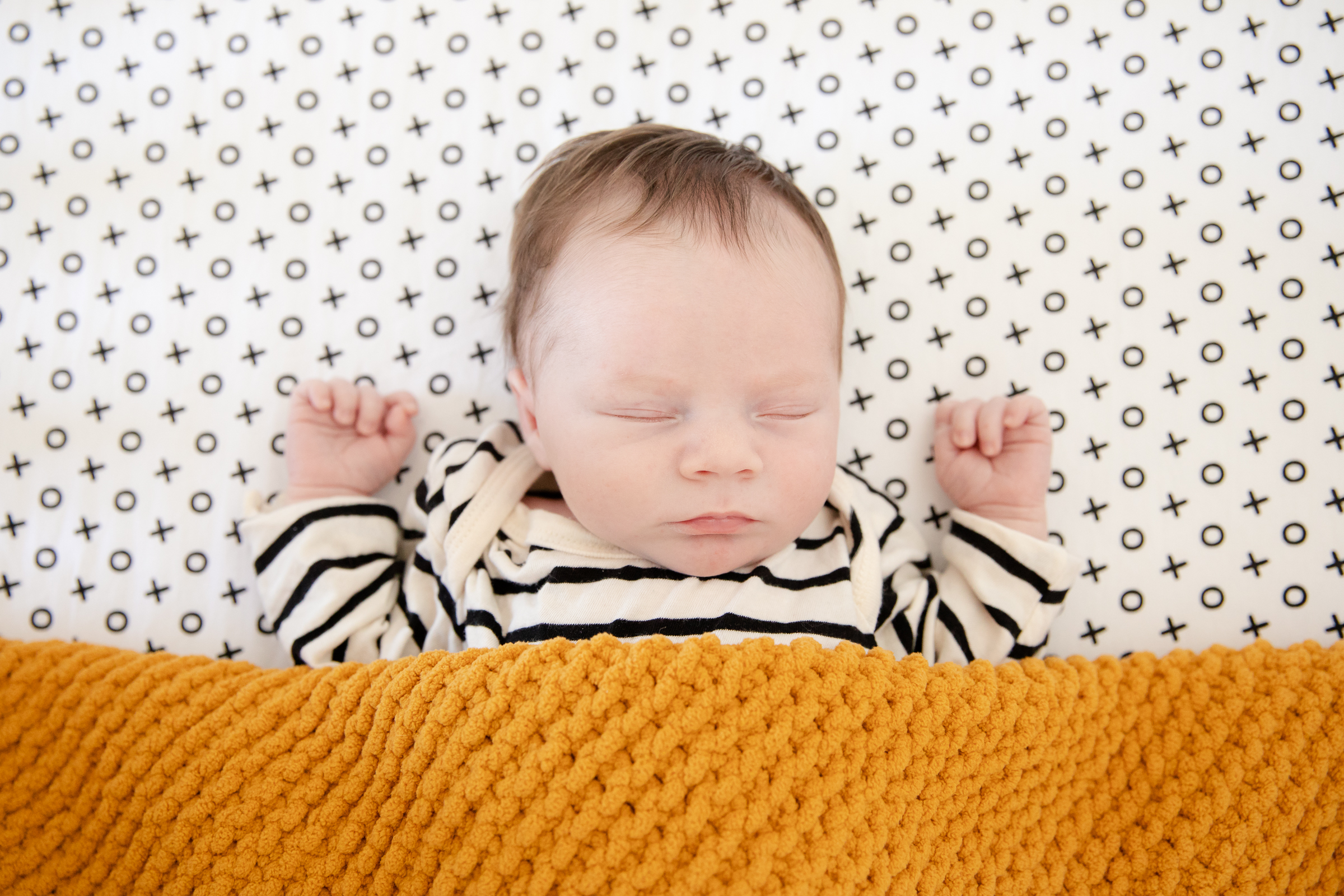 NewbornPhotos_Shelburne Ontario Photogra
