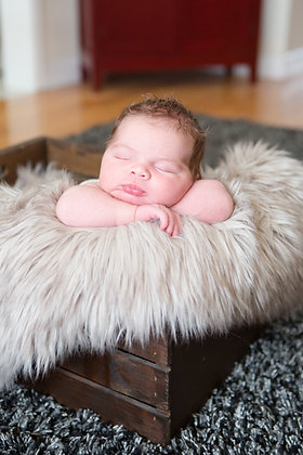 In-Home/ On-Location Newborn Session
