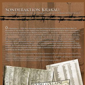 Sonderaktion Krakau