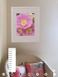 roseChairMenu-iPad12.jpg