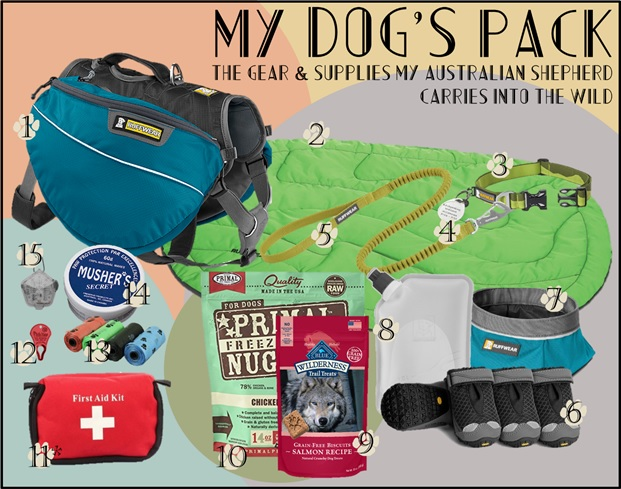 The 15 Items in My Dog's Pack