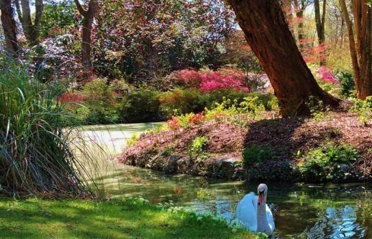exbury_gardens_1192646ab06630b77291a209c