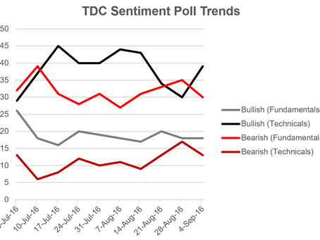 Introducing the TDC Equity Sentiment Poll