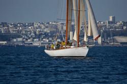 hirondelle_brest_louiseras_sailinghirondelle