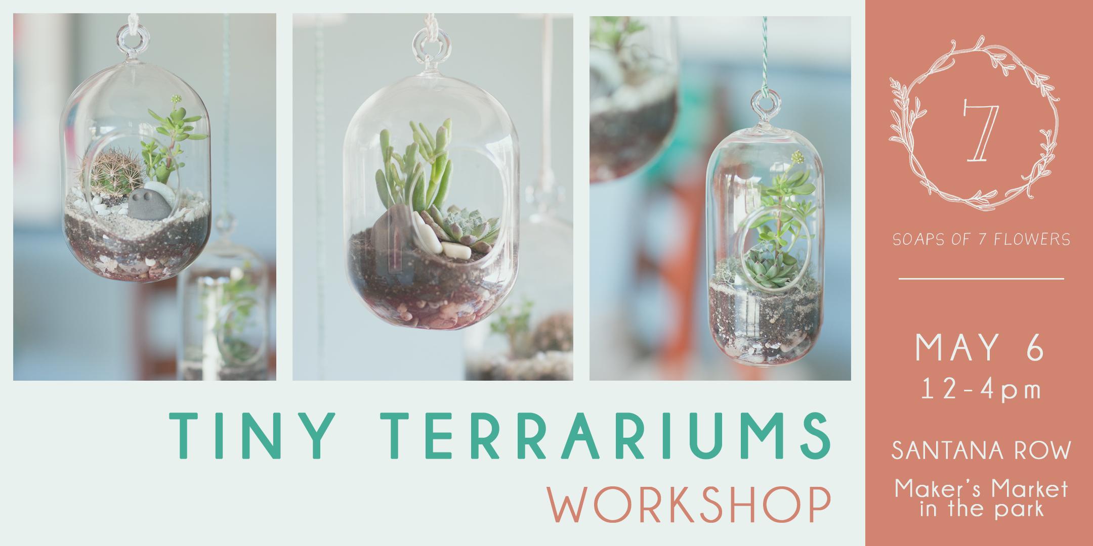 Terrariums Workshop- Feast It Forward