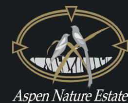 Aspen Nature