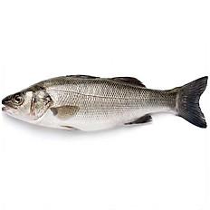 Sea Bass /Kg