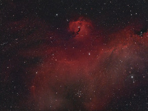 seagull nebula - IC2177