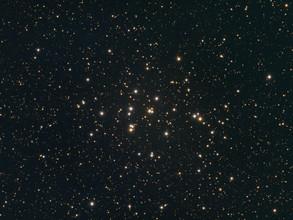 krippe - M44