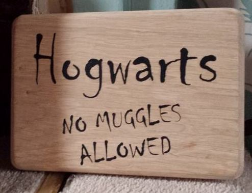 Hogwarts - no muggles allowed