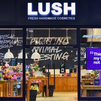 Lush Cosmetics | Infinite Photography Missoula
