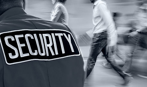 Security Guard 2.jpg
