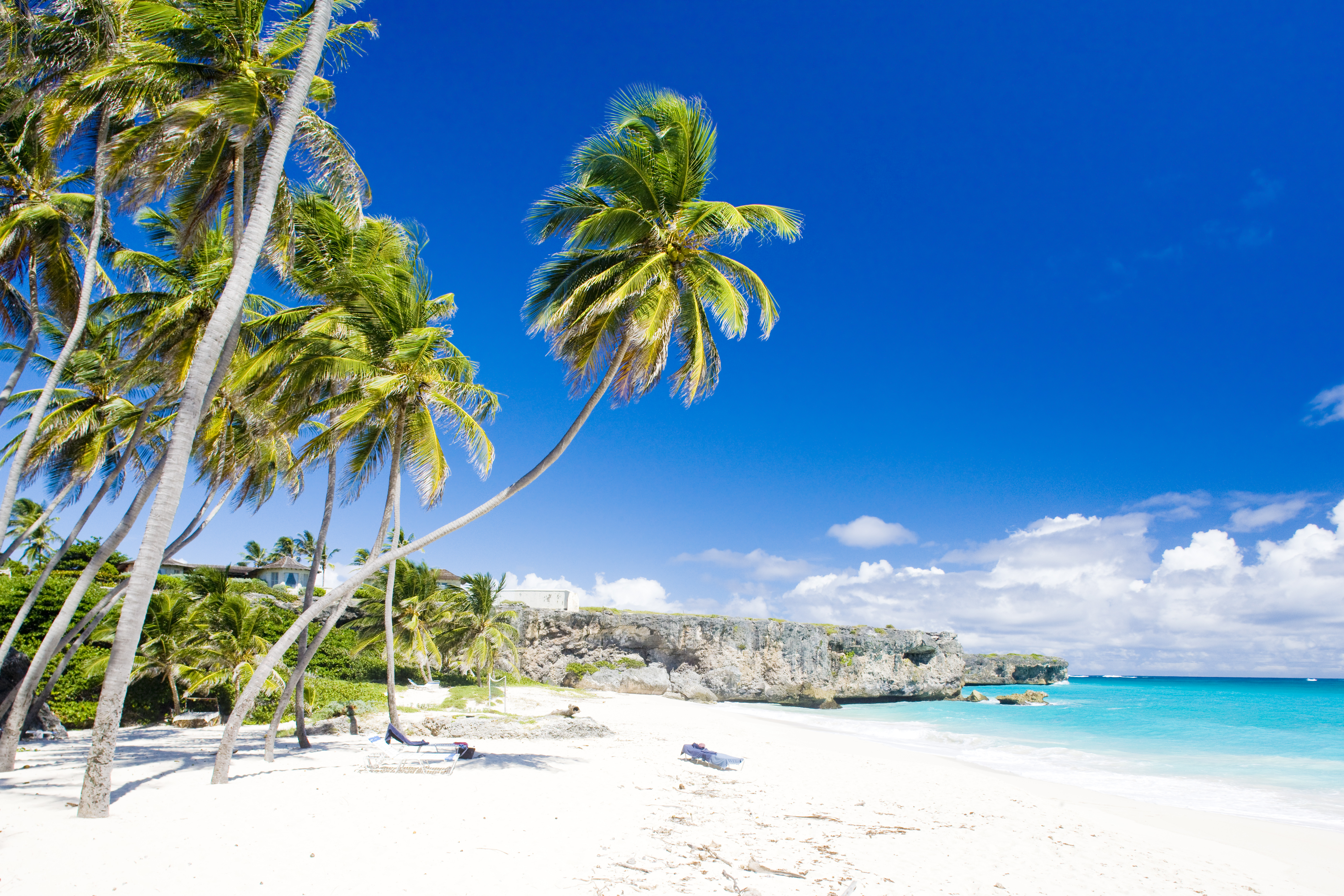 Tours In Barbados