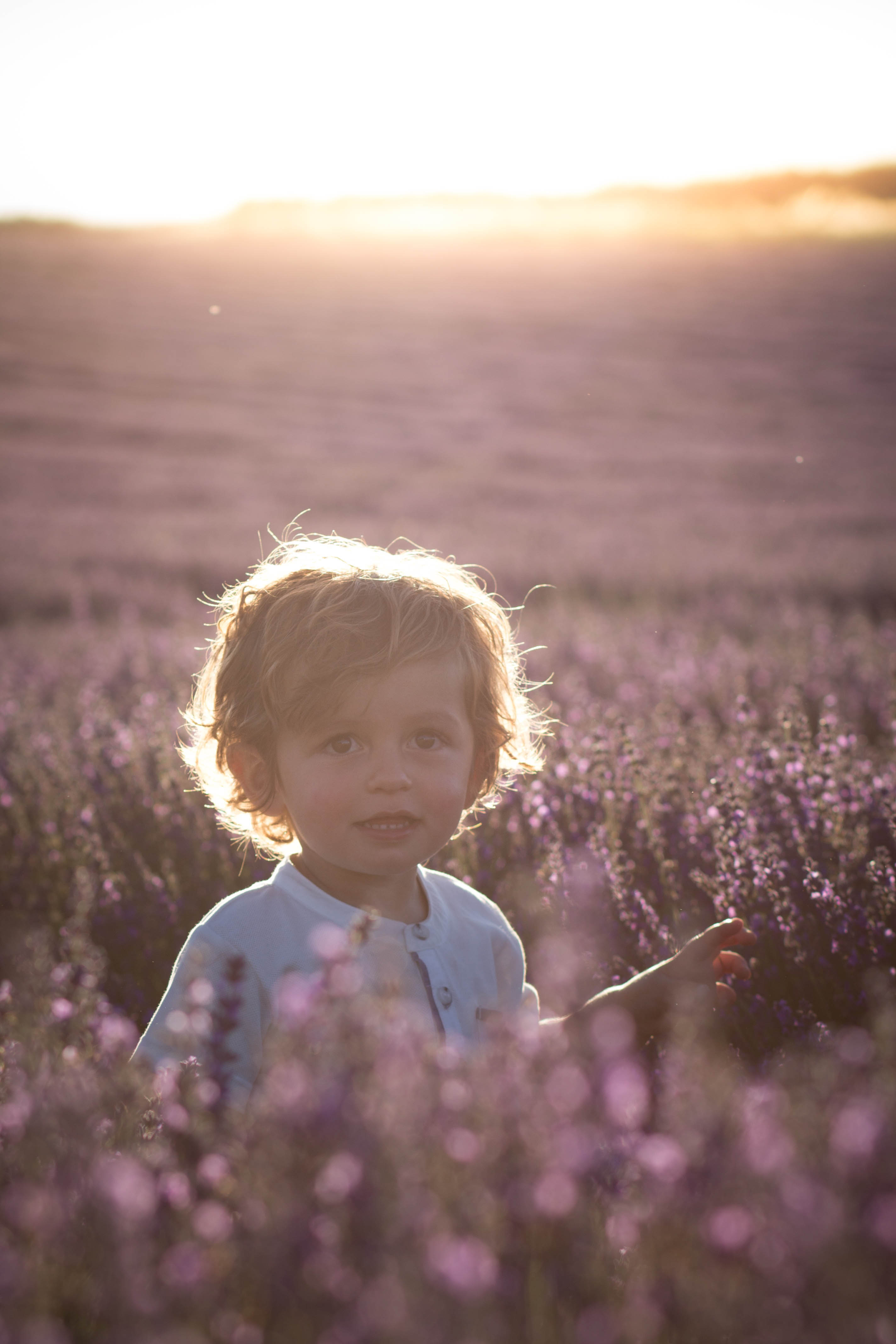 Lavender Children Photography Hants