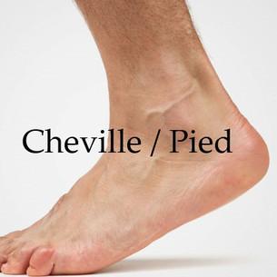 Cheville Pied 1.0.jpg