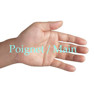 Poignet-Main.jpg