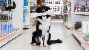 Anti-tartre naturel pour chiens et chats pas cher !