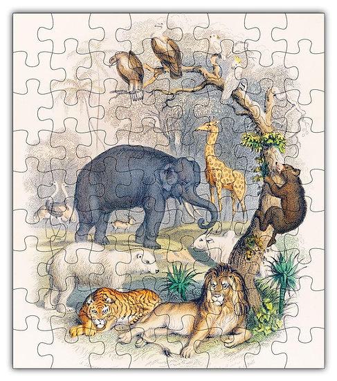 Zoo Animal Puzzle #6802