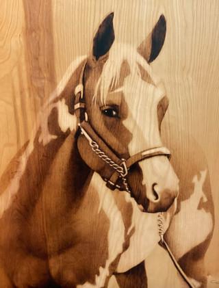 Horse_Charriez.jpg