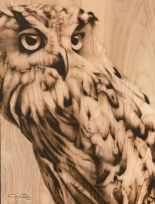 Owl_Charriez.jpg