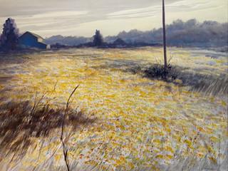 Field of Gold_Whiteside.jpg
