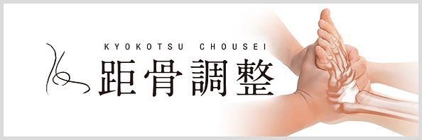 kyokotsu_bnr.png