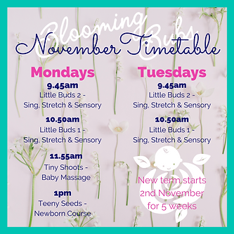 November timetable .png