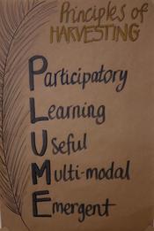 PLUME - principles of harvesting