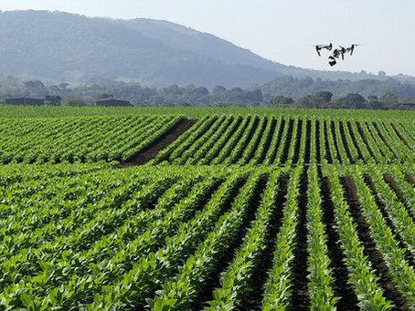 Tecnología aplicada a la agricultura en Guatemala