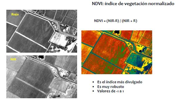 NDVI salud de las plantas Dron-A&S Guatemala