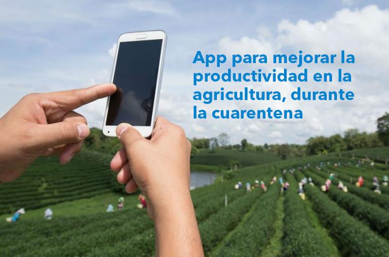 App para mejorar la productividad en la agricultura, durante la cuarentena por Coronavirus