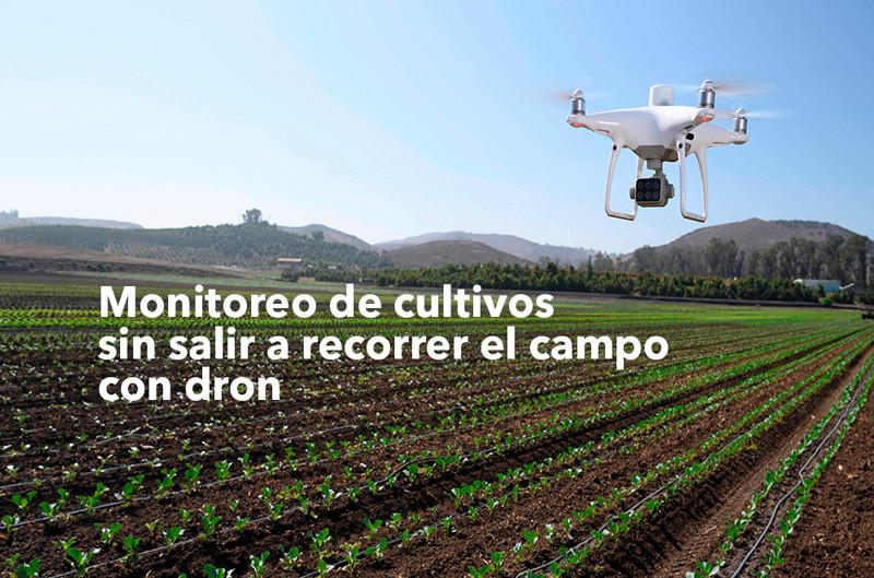 En esta crisis de Coronavirus, así se protege la producción agrícola con dron