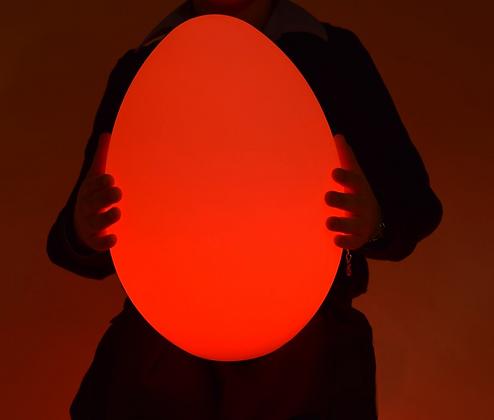Colour Changing LED Mood Light Egg Sensory Furniture